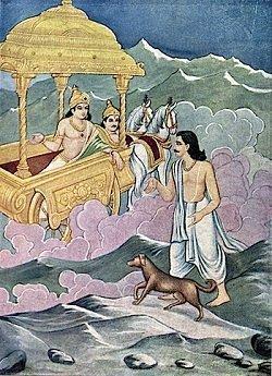 Yudhishtira e il segreto del cane