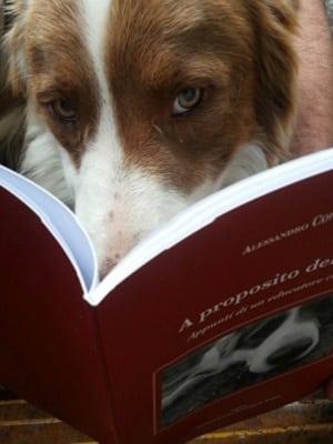 il mio cane che legge il libro sui cani