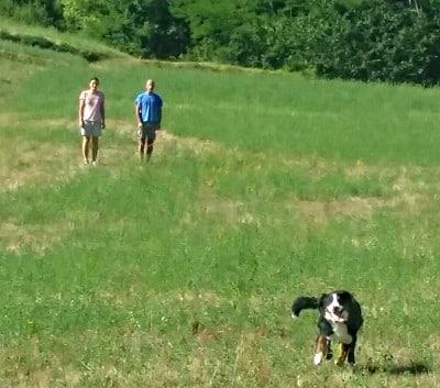 cane e padrone razza bovaro del bernese