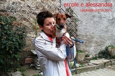 cane e padrone jack russel