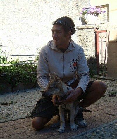 cane e padrone lupo cecoslovacco cucciolo