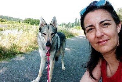cane e padrone lupo cecoslovacco femmina