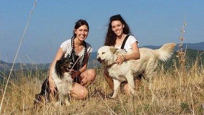 cane e padrone cugine con i loro cani