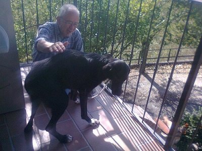 cane e padrone razza meticcia