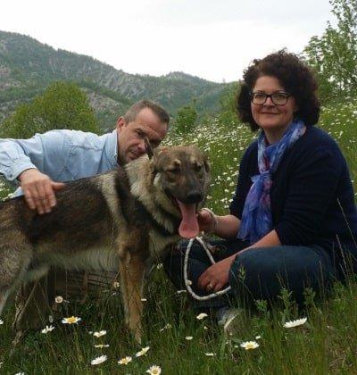 cane e padrone razza meticcio
