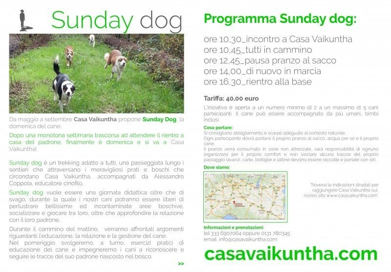 dog trekking sunday dog locandina