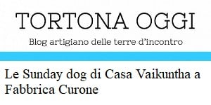 sunday dog su tortona oggi