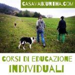 in cammino con il cane durante i corsi di educazione
