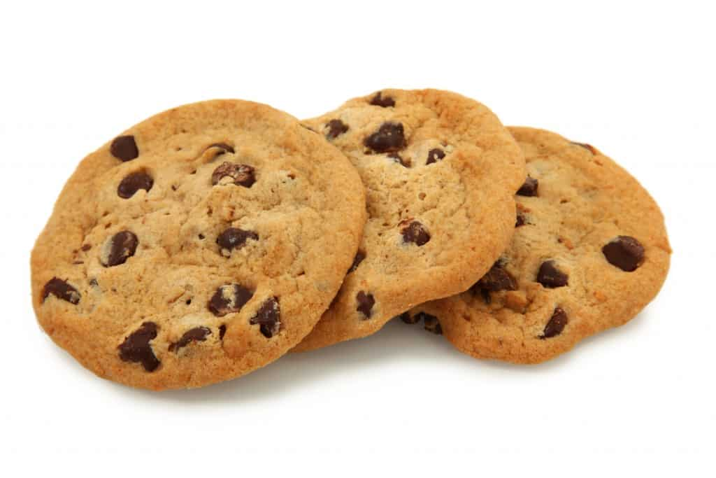 informativa privacy policy cookies
