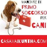 libretto sanitario del cane e manovre di primo soccorso