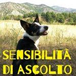 come sviluppare la sensibilità di ascolto del cane educazione cinofila