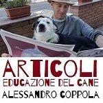 in cammino con il cane e articoli sulla educazione del cane