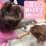 video attività cinofile pet education