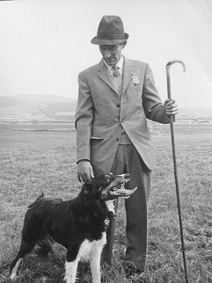 storia dello sheepdog in Italia e H. Glyn Jones, Bodfari