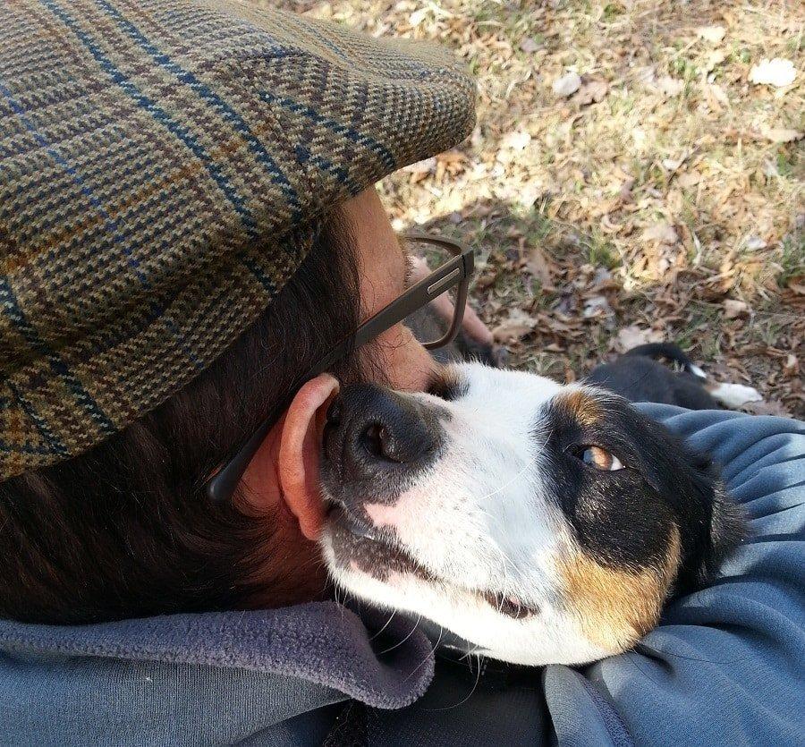 amore uomo e cane abbasso i bocconi avvelenati