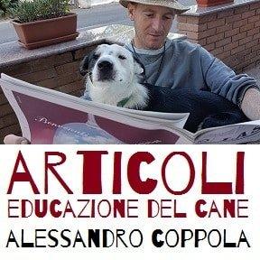 articoli educazione del cane
