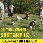 comprare o adottare un cane cultura cinofila
