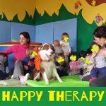 video attivita cinofile pet education
