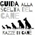 pedigree razze di cane