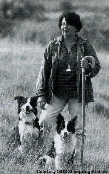 history italian sheepdog world trial