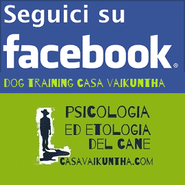 dog training casa vaikuntha su facebook