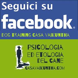 dog training casa vaikuntha su facebook
