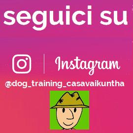 seguici su instagram @dog_training_casavaikuntha