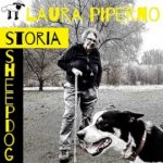 storia dello sheepdog in italia e dimostrazione sheepdog alla fiera del bestiame di ottone