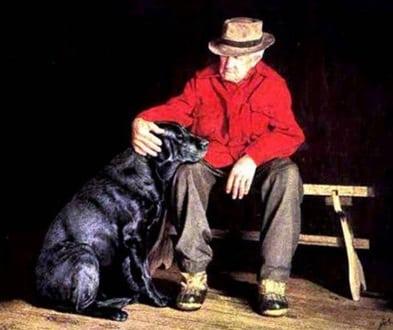 pet therapy case di riposo progetto il cane terapeutico - casavaikuntha