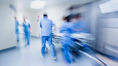 pet therapy per operatori sanitari