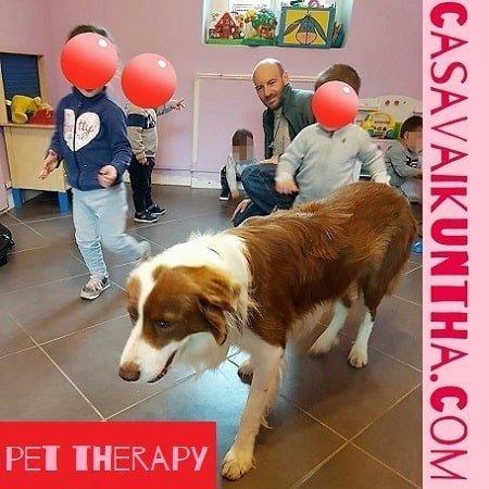 """Pet therapy al baby parking baby sitting """"C'era una Volta"""" di Viguzzolo (AL)"""