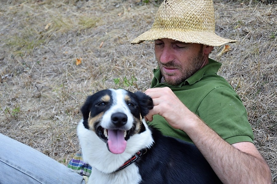 sensibilità e gentilezza nella educazione del cane