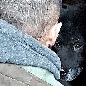 Chi ha paura del cane nero?