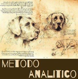 metodo analitico educazione cane di alessandro coppola