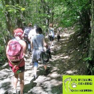dog trekking didattici casavaikuntha