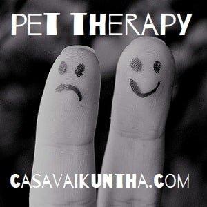 descrizione della pet therapy