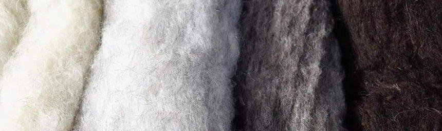 esempio di cardatura della lana