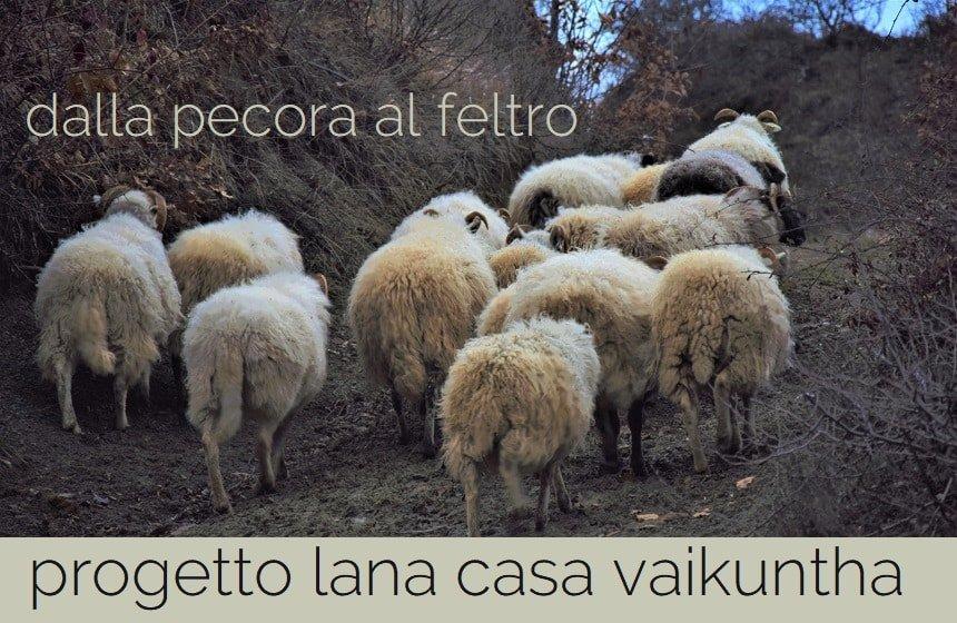 dalla pecora al feltro