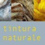 dalla pecora al feltro tintura naturale della lana