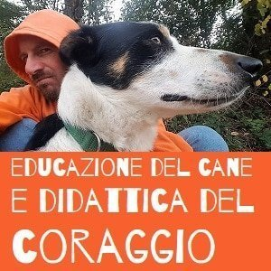 Educazione del cane e didattica del coraggio