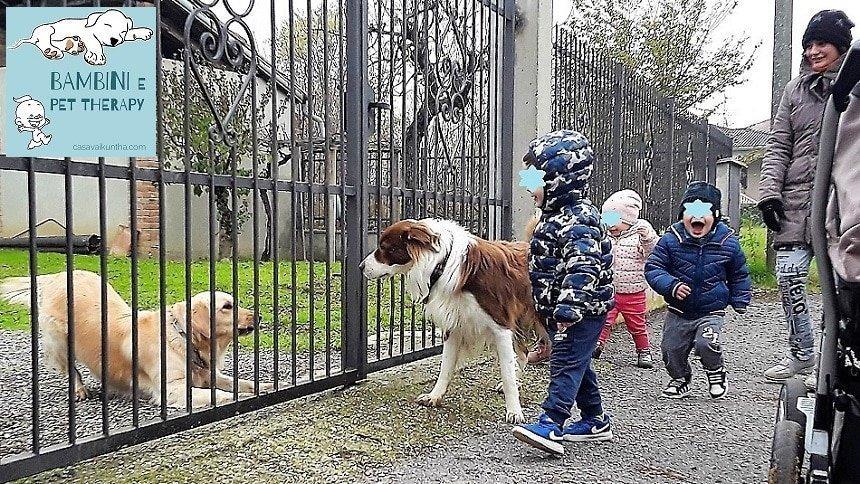 bambini e pet therapy casavaikuntha