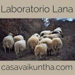 laboratorio lana e lavaggio della lana casa vaikuntha