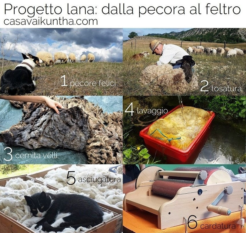 dalla pecora al feltro al mercato