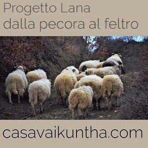 progetto lana dalla pecora al feltro laboratori di feltro per bambini