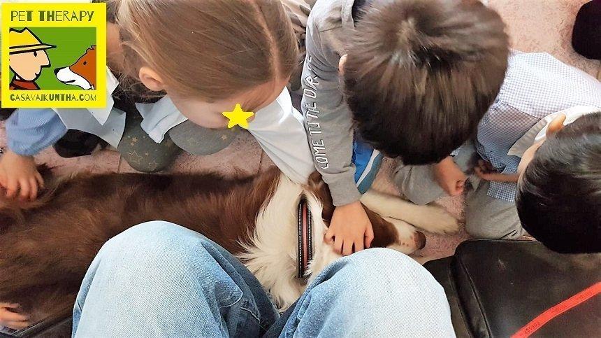 il cane all asilo coccolato dai bimbi