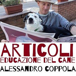 articoli sulla educazione del cane casavaikuntha