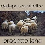 progetto lana dalla pecora al feltro asciugatura della lana