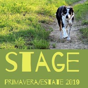 Stage Primavera Estate 2019 a Casa Vaikuntha