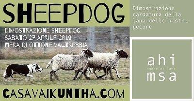 dimostrazione sheepdog alla fiera di ottone evento facebook
