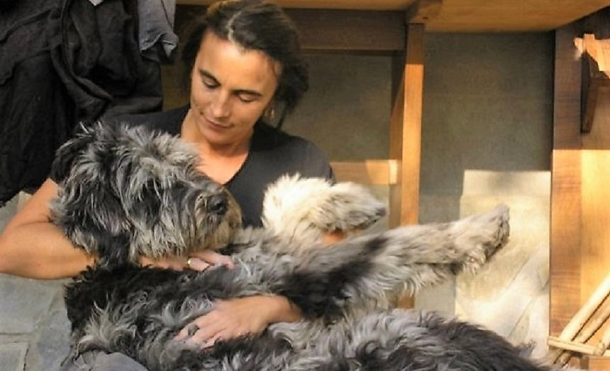 il cane dominante e la noia terapeutica